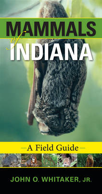 Mammals of Indiana A Field Guide by John O., Jr. Whitaker