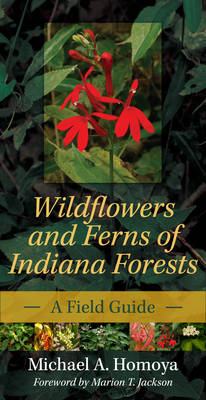 Wildflowers and Ferns of Indiana Forests A Field Guide by Marion T. Jackson