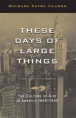 THESE DAYS OF LARGE THINGS by