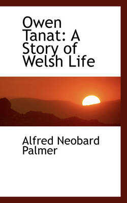 Owen Tanat A Story of Welsh Life by Alfred Neobard Palmer