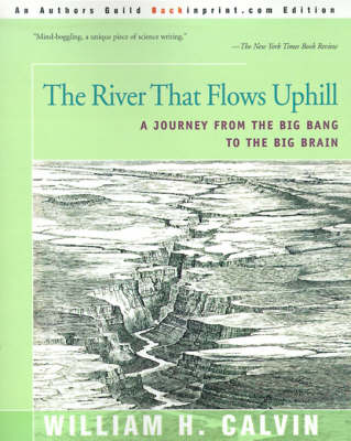 The River That Flows Uphill A Journey from the Big Bang to the Big Brain by Affiliate Professor William H (University of Washington, School of Medicine) Calvin