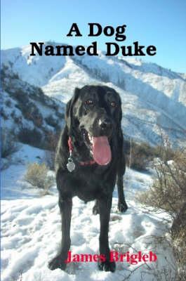 A Dog Named Duke by James Brigleb