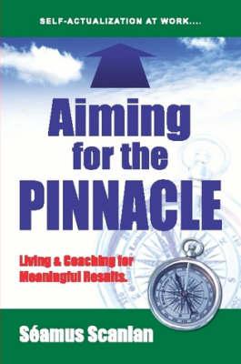 Aiming For The Pinnacle by Seamus Scanlan