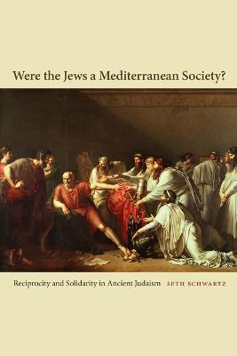 Were the Jews a Mediterranean Society? Reciprocity and Solidarity in Ancient Judaism by Seth Schwartz