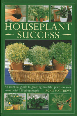 Houseplant Success an Essential Guide to Growing Beautiful Plants in Your Home Throughout the Year by Jackie Matthews