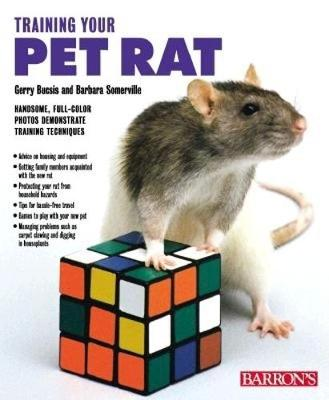 Training Your Pet Rat by Gerry Buscis, Gerry Bucsis, Barbara Somerville, Barbara Somerville