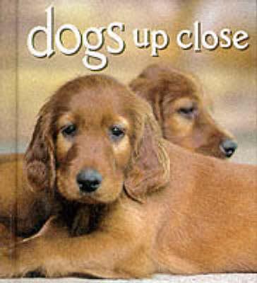 Dogs Up Close by Vicki Croke