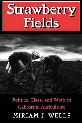 Strawberry Fields Politics, Class, and Work in California Agriculture by Miriam J. Wells