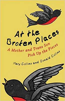 At the Broken Places A Mother and Trans Son Pick Up the Pieces by Mary, OSB (St Mary?s NHS Trust) Collins