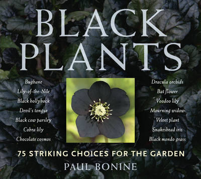 Black Plants 75 Striking Choices for the Garden by Paul Bonine