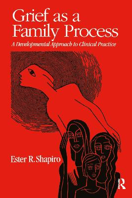 Grief as a Family Process A Developmental Approach to Clinical Practice by Ester R. Shapiro