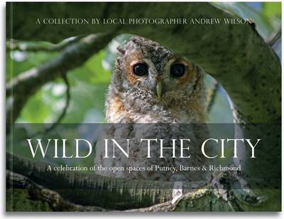 Wild in the City A Celebration of the Open Spaces of Putney, Barnes and Richmond by Andrew Wilson