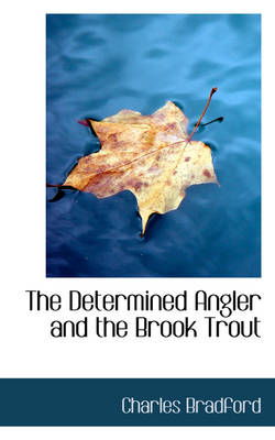 The Determined Angler and the Brook Trout by Charles Bradford