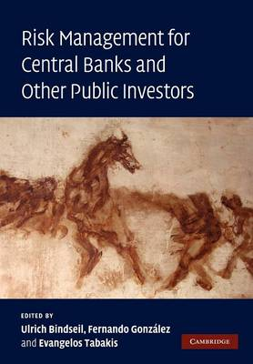 Risk Management for Central Banks and Other Public Investors by Ulrich (European Central Bank, Frankfurt) Bindseil