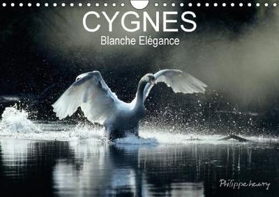 Cygnes. Blanche Elegance 2018 Les Plus Belles Photos De Cygnes Prises Dans Des Regions Sauvages De France Et De Finlande. by Philippe Henry