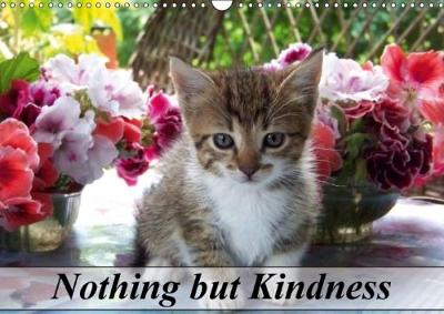 Nothing but Kindness 2018 Perspectives on Animals Life by cosmin codrut cicu