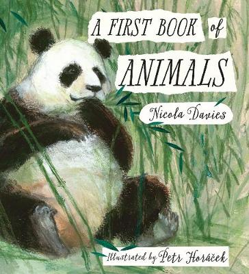 A First Book of Animals by Nicola Davies