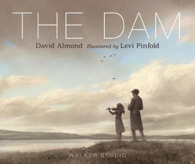 Cover for The Dam by David Almond