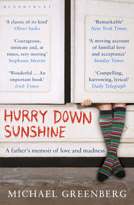 Hurry Down Sunshine A Father's Memoir of Love and Madness by Michael Greenberg