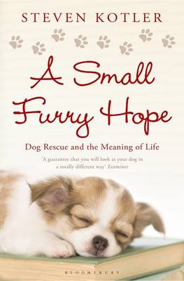 A Small Furry Hope Dog Rescue and the Meaning of Life by Steven Kotler