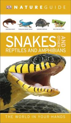 Nature Guide Snakes and Other Reptiles and Amphibians by