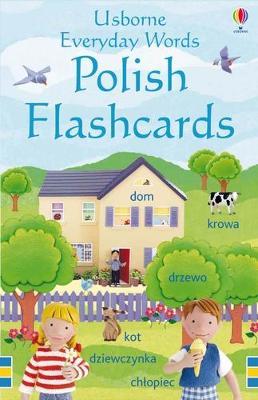 Everyday Words in Polish Flashcards by Usborne