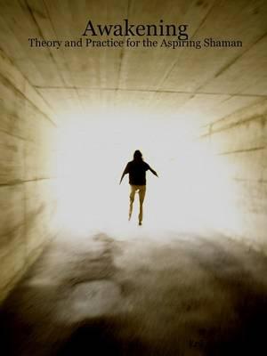 Awakening Theory and Practice for the Aspiring Shaman by Erik McBride