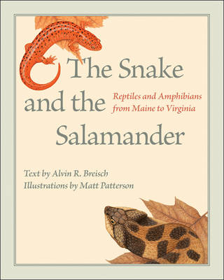 The Snake and the Salamander Reptiles and Amphibians from Maine to Virginia by Alvin R. Breisch