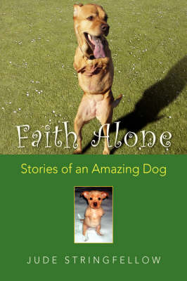 Faith Alone Stories of an Amazing Dog by Jude Stringfellow
