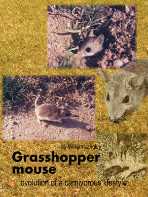 Grasshopper Mouse: Evolution of a Carnivorous Life Style by William Langley