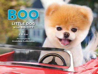 Boo Little Dog in the Big City by J. H. Lee