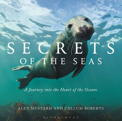 Secrets of the Seas A Journey into the Heart of the Oceans by Alex Mustard, Callum Roberts