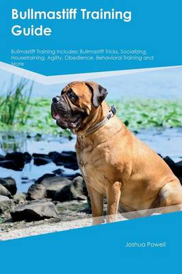 Bullmastiff Training Guide Bullmastiff Training Includes Bullmastiff Tricks, Socializing, Housetraining, Agility, Obedience, Behavioral Training and More by Blake Rees