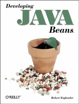 Developing Java Beans by Robert Englander