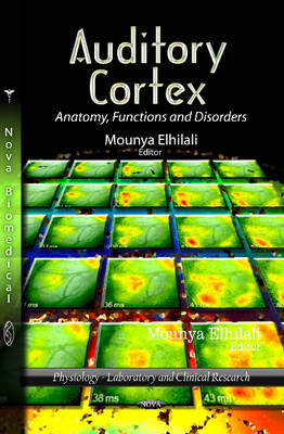 Auditory Cortex Anatomy, Functions & Disorders by Mounya Elhilali