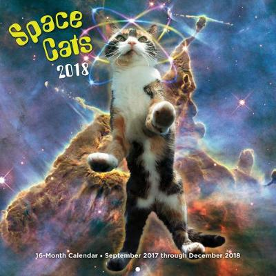 Space Cats 2018 16 Month Calendar Includes September 2017 Through December 2018 by Editors of Rock Point