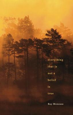 Everything That is Not a Belief is True by Ray Menezes
