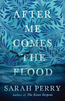 Cover for After Me Comes the Flood by Sarah Perry