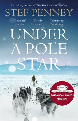 Cover for Under a Pole Star by Stef Penney