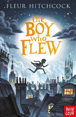 Cover for The Boy Who Flew by Fleur Hitchcock