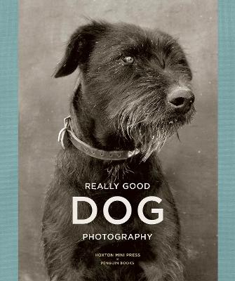 Really Good Dog Photography by Hoxton Mini Press