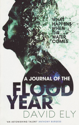 A Journal of the Flood Year by David Ely