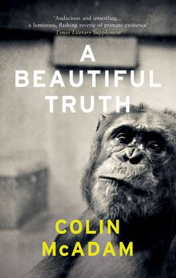 A Beautiful Truth by Colin McAdam