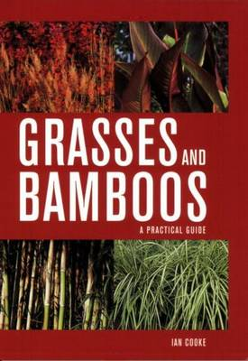 Grasses and Bamboos A Practical Guide by Ian Cooke