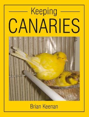 Keeping Canaries by Brian Keenan