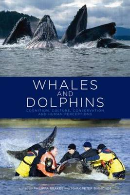 Whales and Dolphins Cognition, Culture, Conservation and Human Perceptions by Philippa Brakes