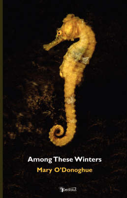 Among These Winters by Mary, O'Donoghue