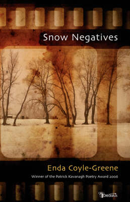 Snow Negatives by Enda Coyle-Greene