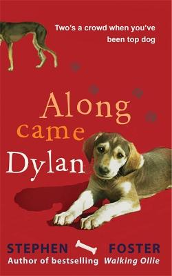 Along Came Dylan by Stephen Foster