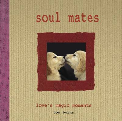 Soul Mates Love's Magic Moments by Tom Burns